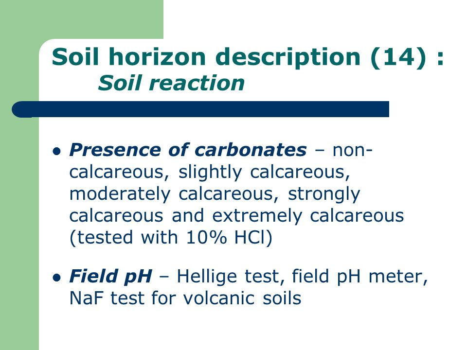 Soil horizon description (14) : Soil reaction