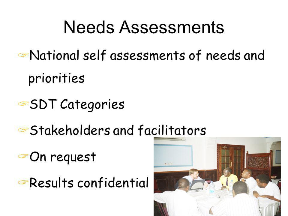 Needs Assessments National self assessments of needs and priorities
