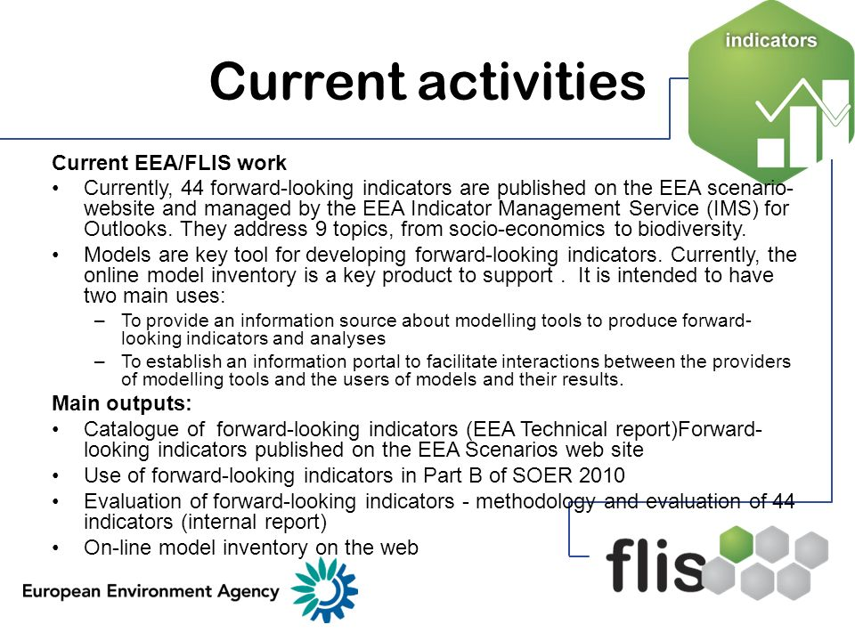 Current activities Current EEA/FLIS work