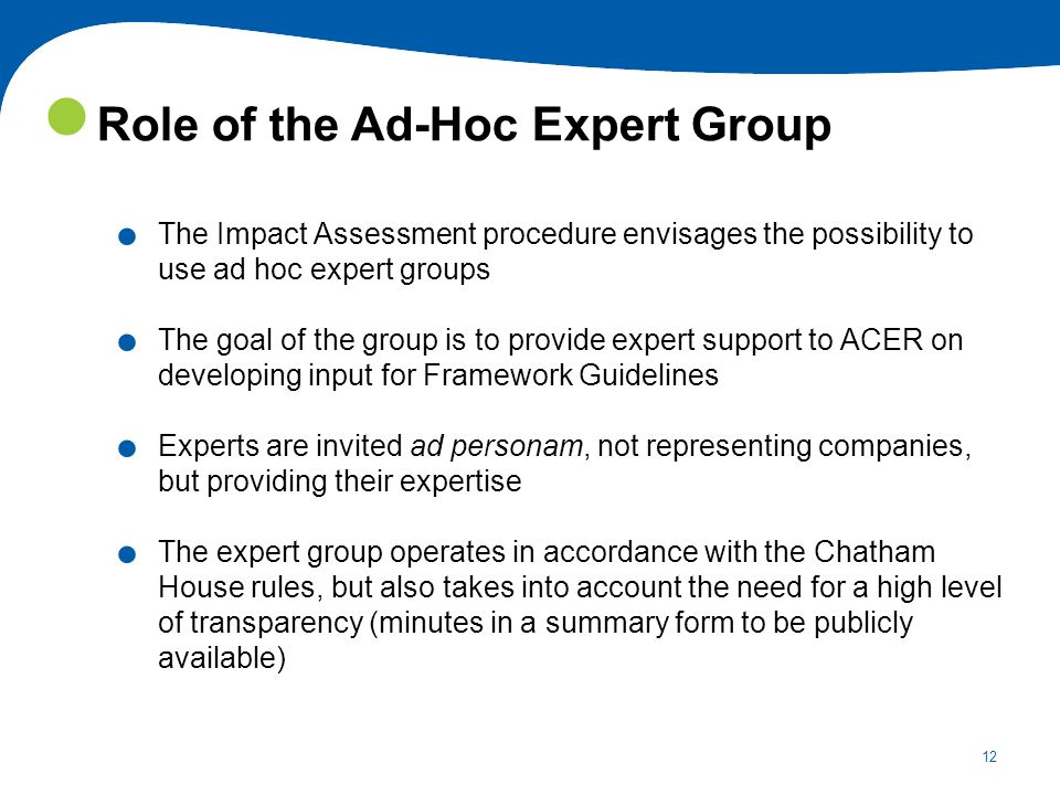 Role of the Ad-Hoc Expert Group