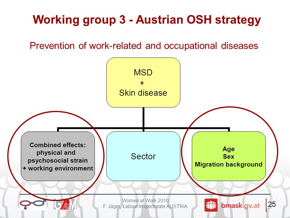 Working group 3 - Austrian OSH strategy