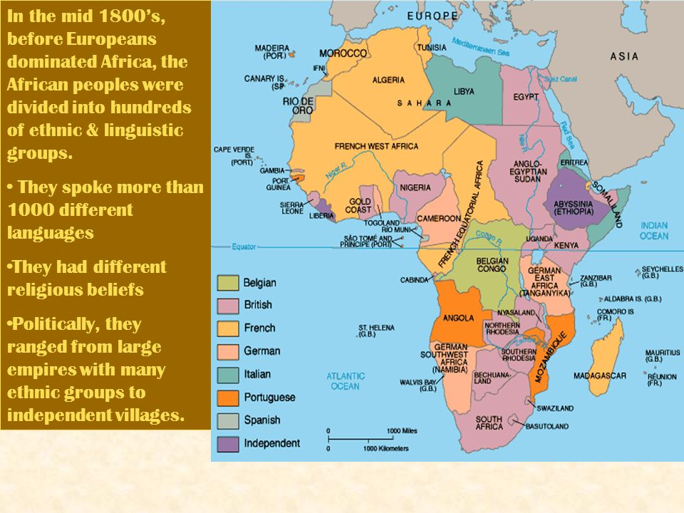 Ethnic groups in africa choice image diagram writing sample the age of imperialism main idea ignoring the claims of african in the mid 1800s before sciox Choice Image
