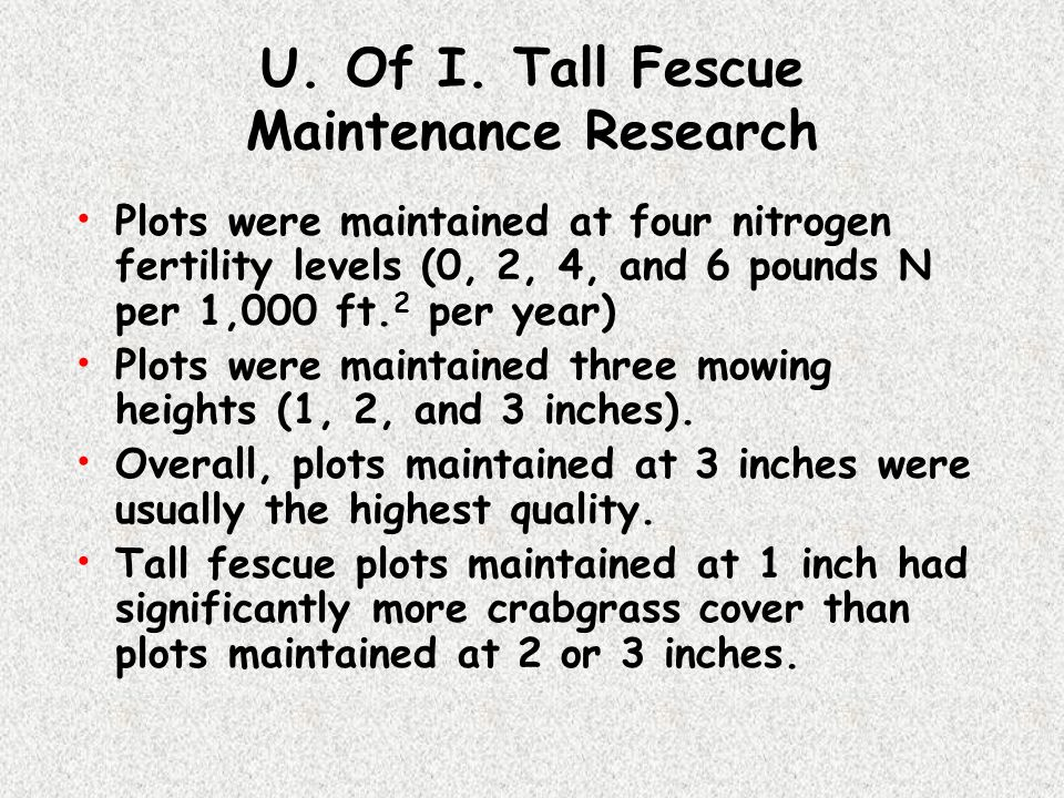 U. Of I. Tall Fescue Maintenance Research