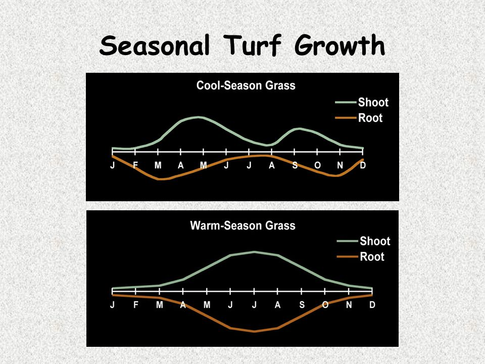 Seasonal Turf Growth 36