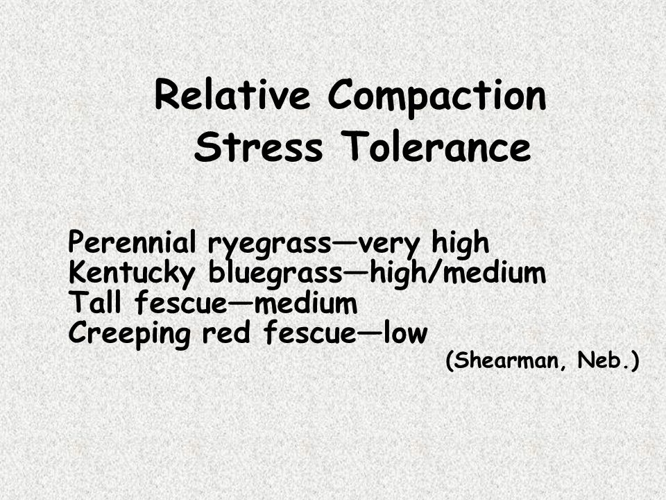 Relative Compaction Stress Tolerance