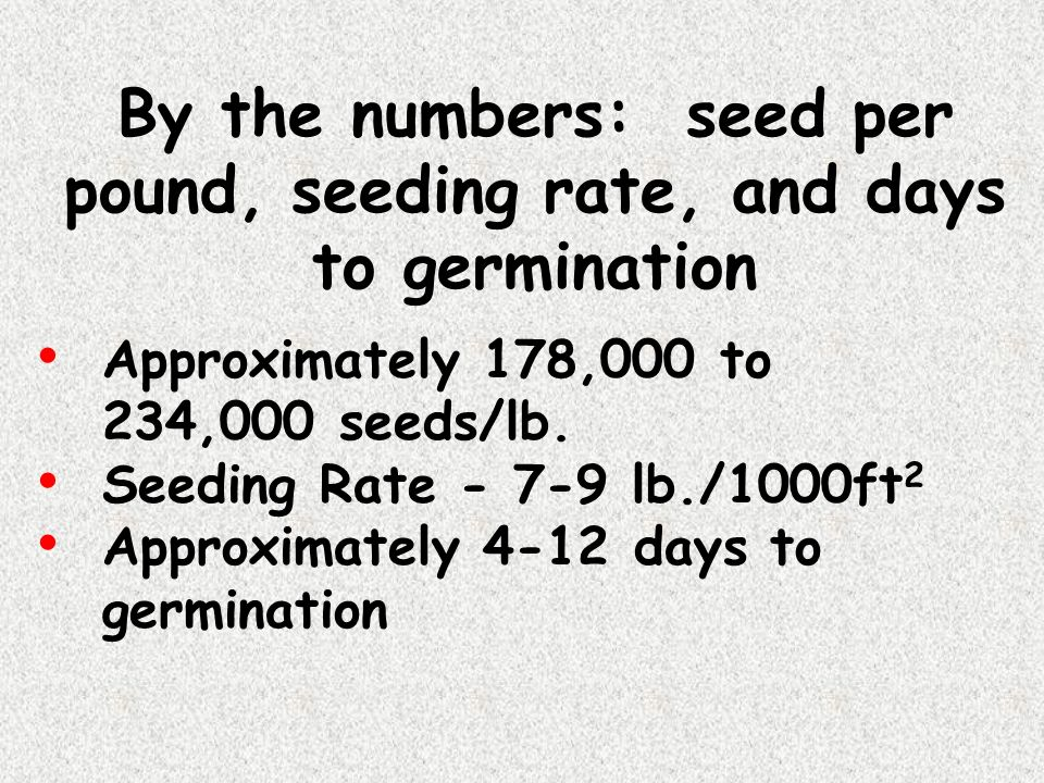 By the numbers: seed per pound, seeding rate, and days to germination