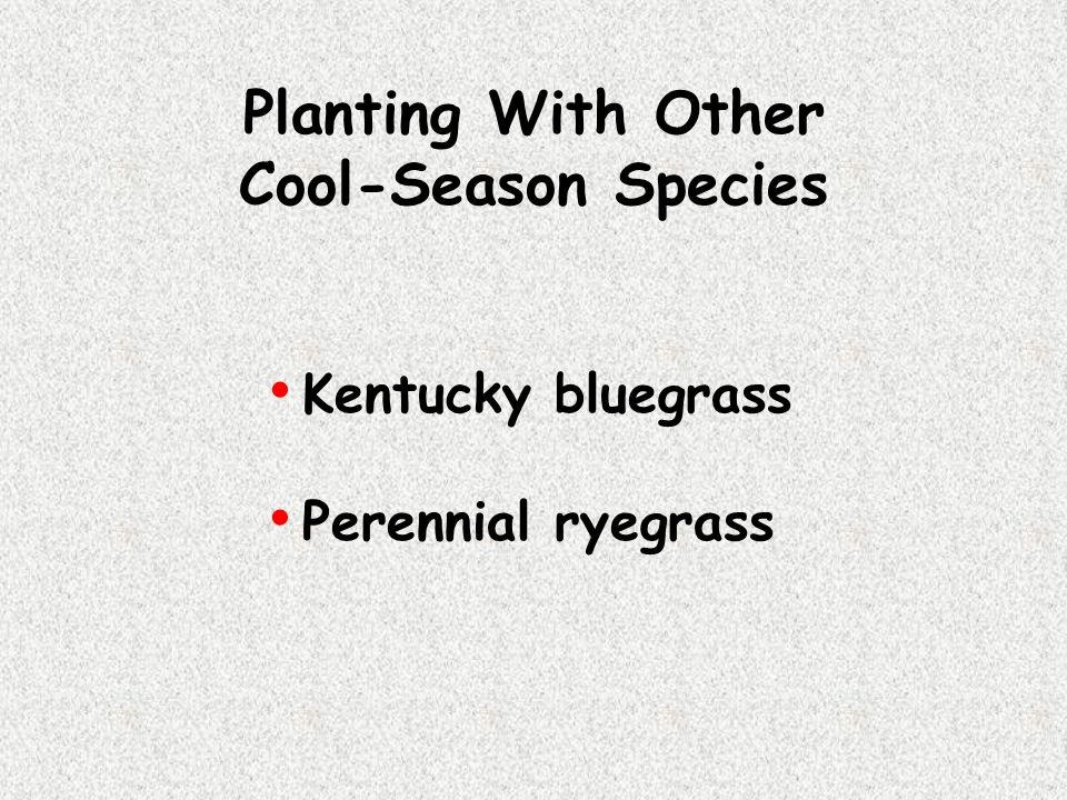Planting With Other Cool-Season Species