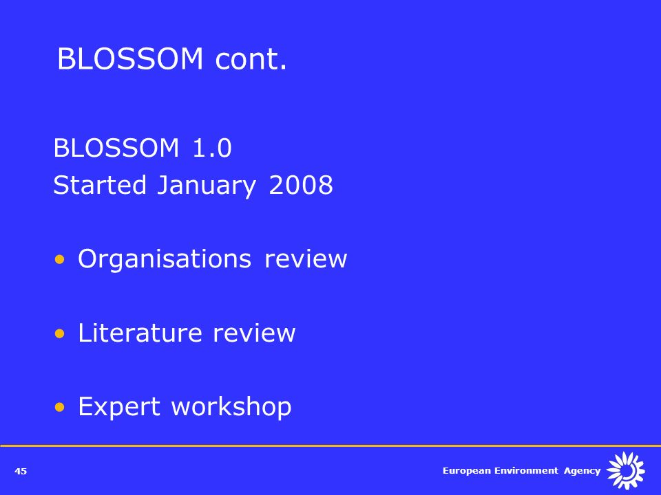 BLOSSOM cont. BLOSSOM 1.0 Started January 2008 Organisations review