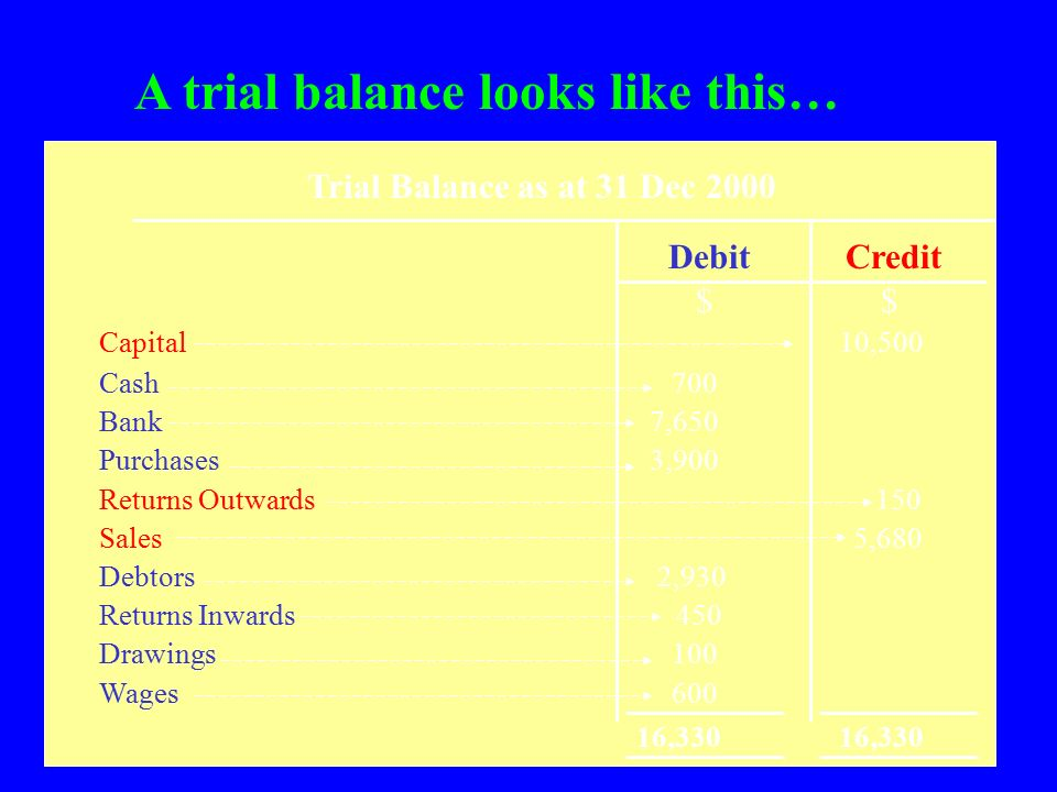 A trial balance looks like this…
