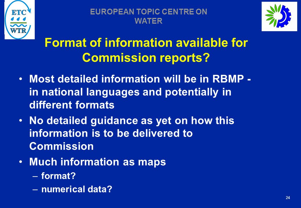 Format of information available for Commission reports