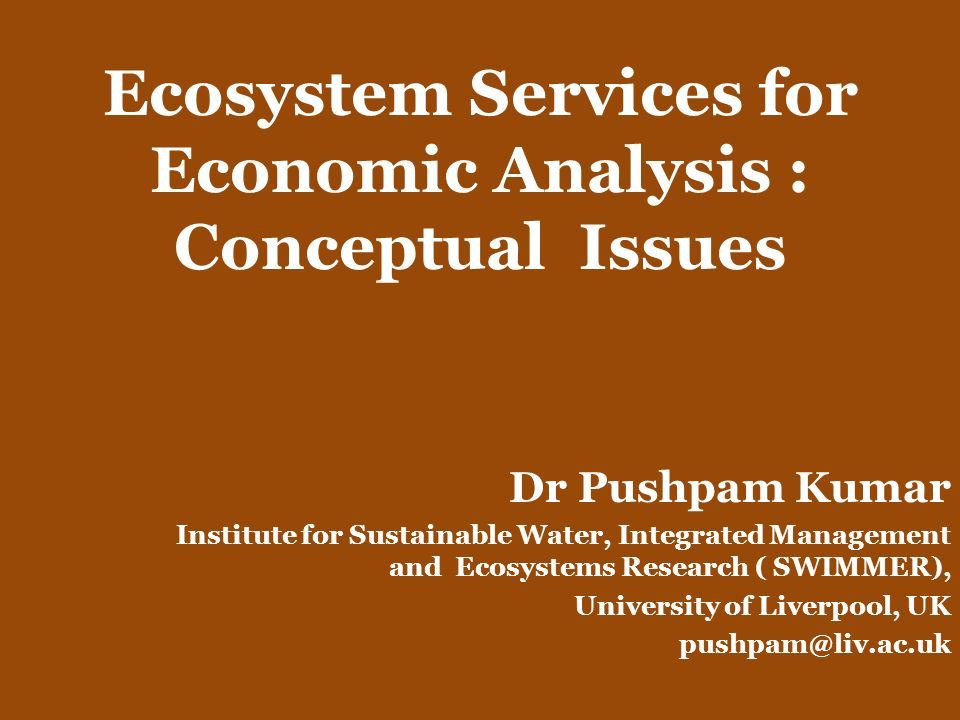 Ecosystem Services for Economic Analysis : Conceptual Issues