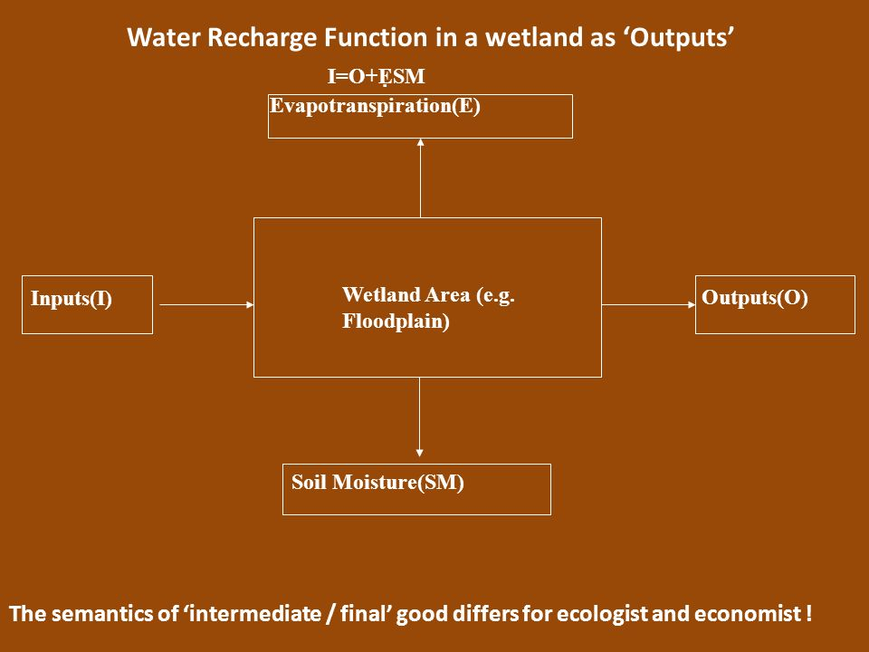 Water Recharge Function in a wetland as 'Outputs'