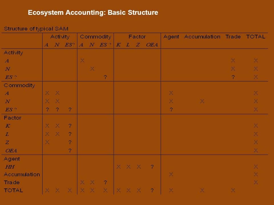 Ecosystem Accounting: Basic Structure