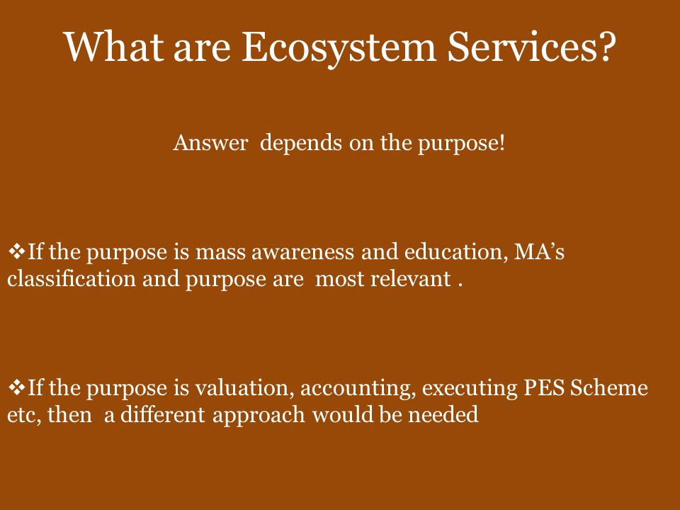 What are Ecosystem Services