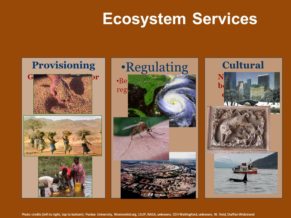 Regulating Ecosystem Services Provisioning Cultural