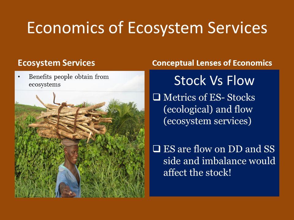 Economics of Ecosystem Services