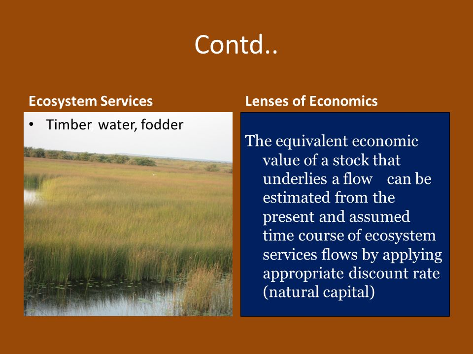 Contd.. Ecosystem Services Lenses of Economics Timber, water, fodder