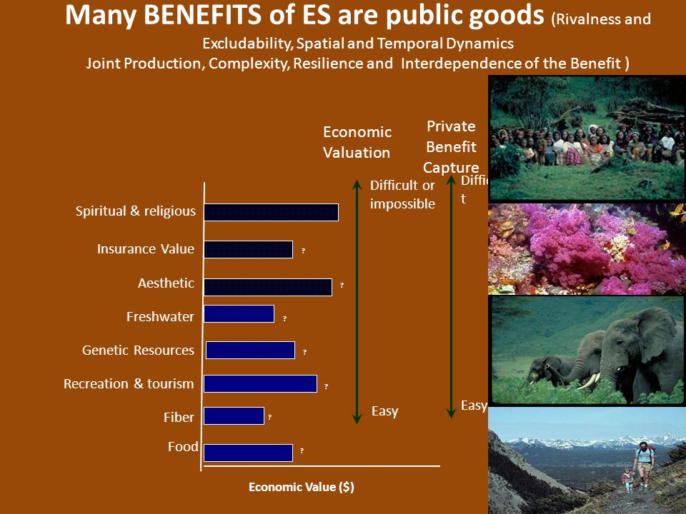 Many BENEFITS of ES are public goods (Rivalness and Excludability, Spatial and Temporal Dynamics
