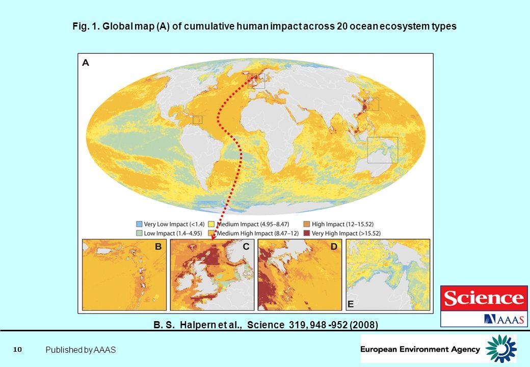 B. S. Halpern et al., Science 319, 948 -952 (2008)