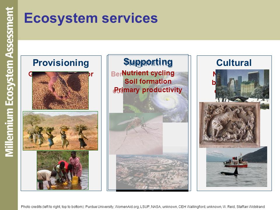 Ecosystem services Provisioning Regulating Supporting Cultural