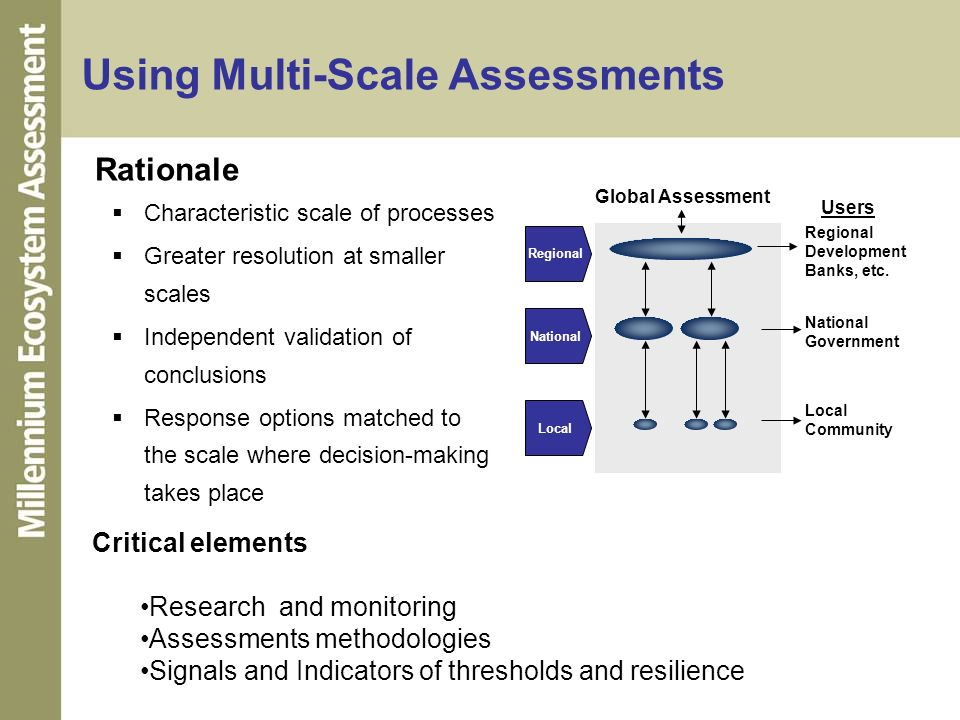 Using Multi-Scale Assessments
