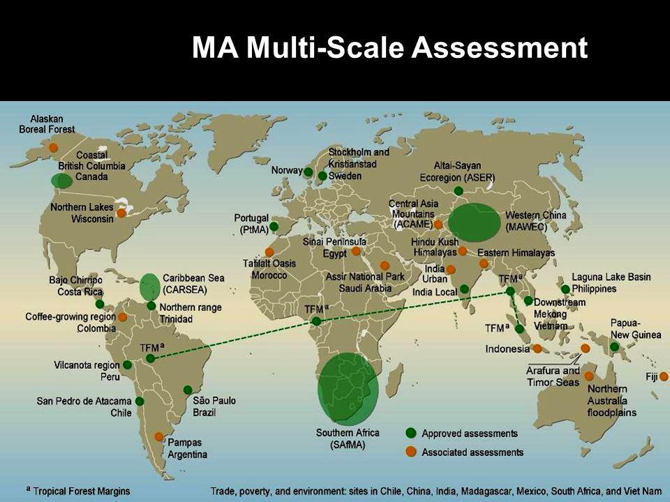MA Multi-Scale Assessment