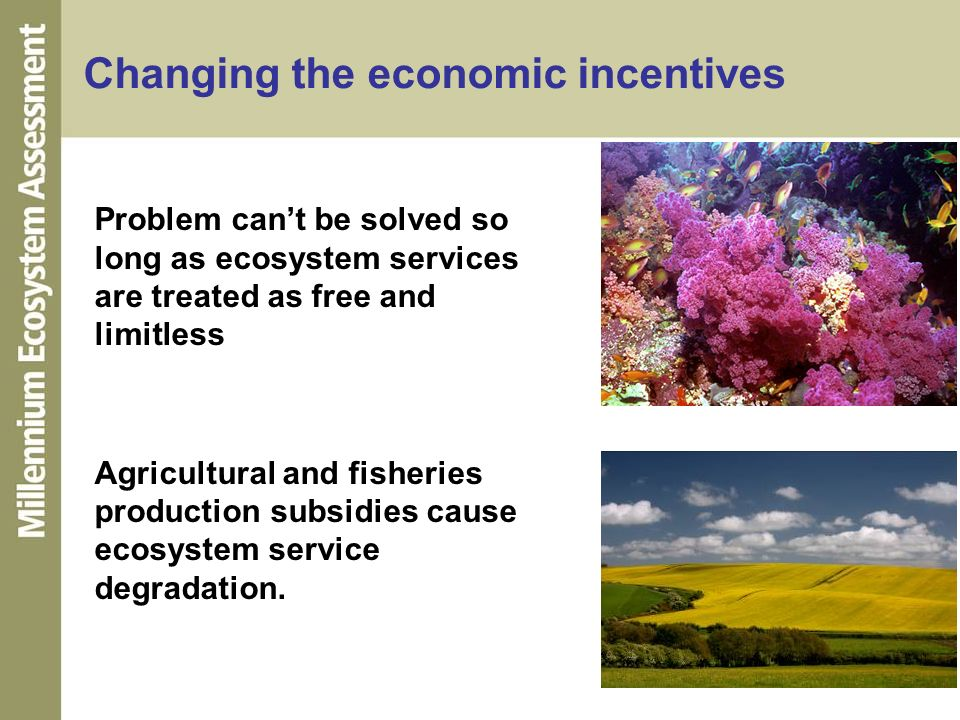 Changing the economic incentives