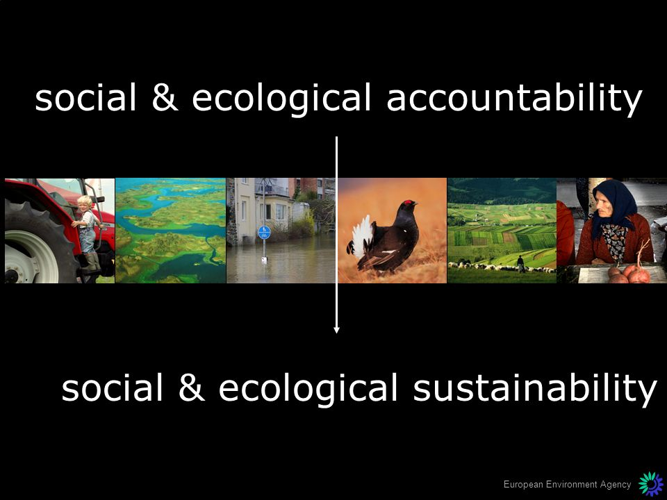 social & ecological accountability