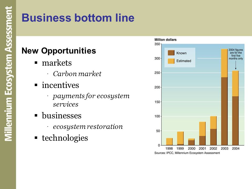 Business bottom line New Opportunities markets incentives businesses