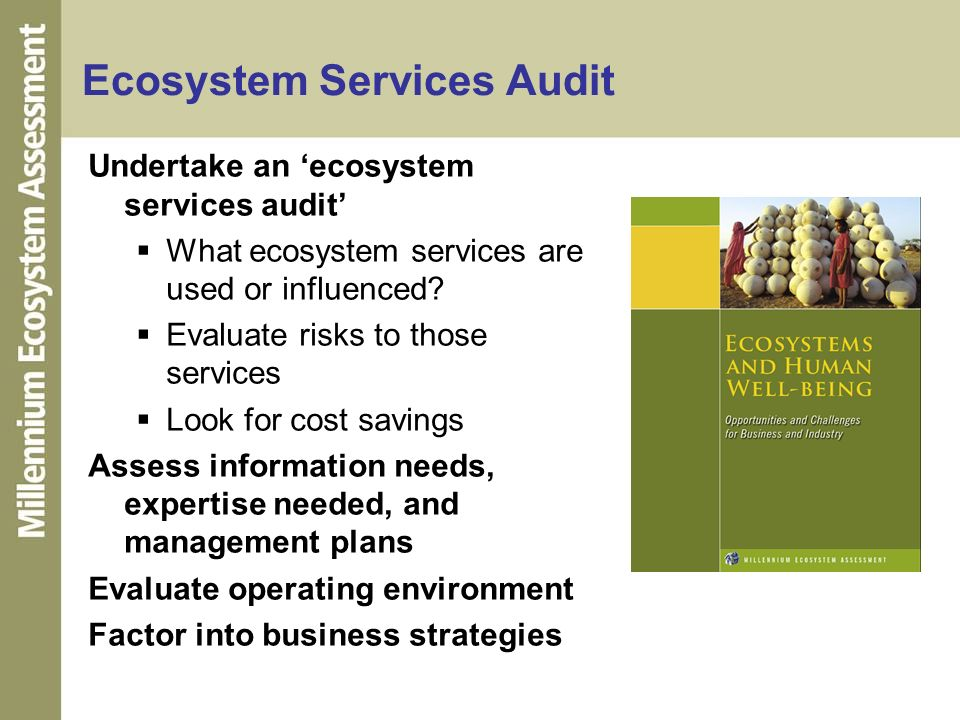 Ecosystem Services Audit