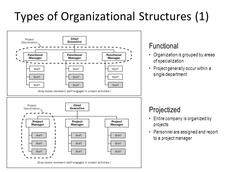 four forms of business organization 2 A general partnership is composed of 2 or more persons (usually not a married couple) who agree to contribute money, labor, or skill to a business each partner shares the profits, losses, and management of the business, and each partner is personally and equally liable for debts of the partnership.