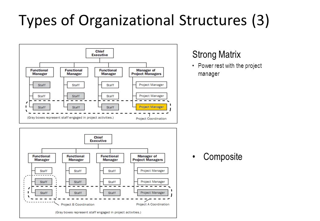 4 Common Types of Organizational Structures
