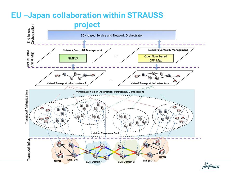 EU –Japan collaboration within STRAUSS project