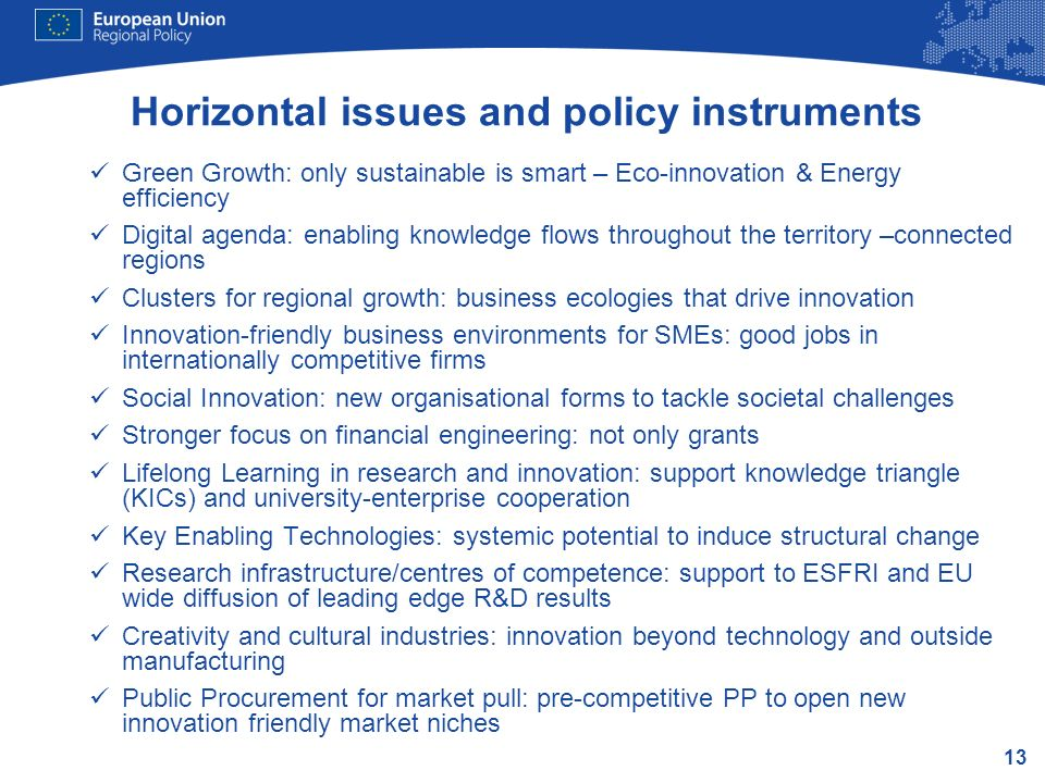 Horizontal issues and policy instruments