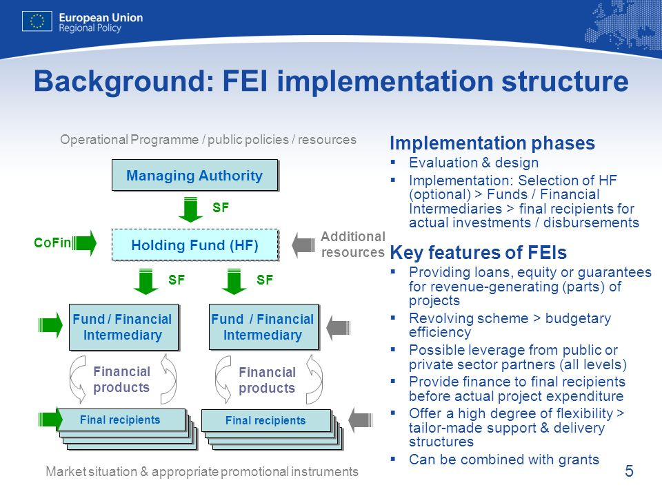 Background: FEI implementation structure