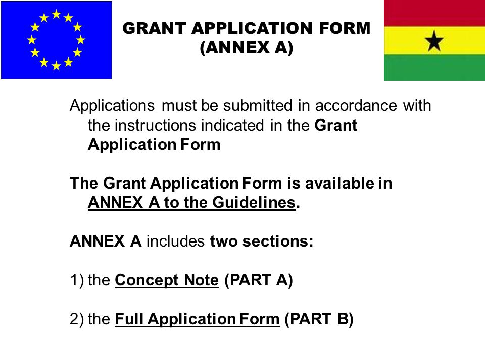 GRANT APPLICATION FORM (ANNEX A)