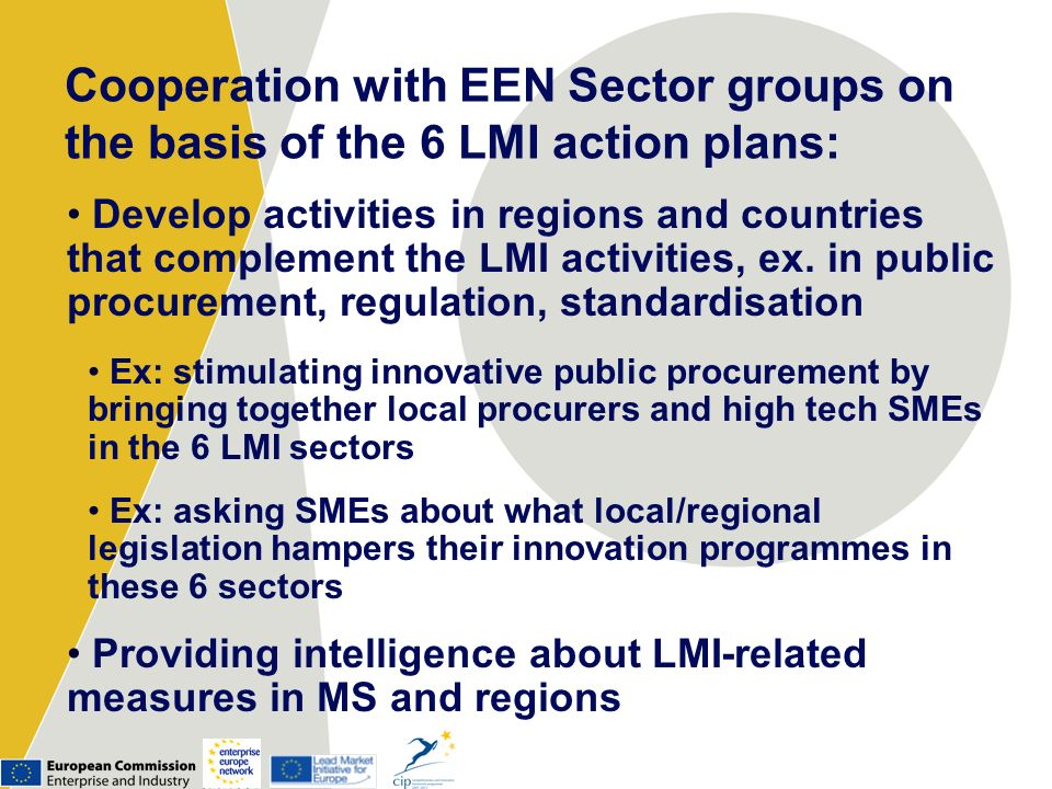 Cooperation with EEN Sector groups on the basis of the 6 LMI action plans:
