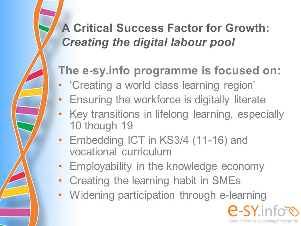 A Critical Success Factor for Growth: Creating the digital labour pool