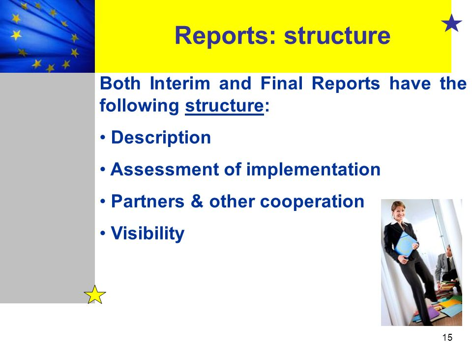 Reports: structure Both Interim and Final Reports have the following structure: Description. Assessment of implementation.