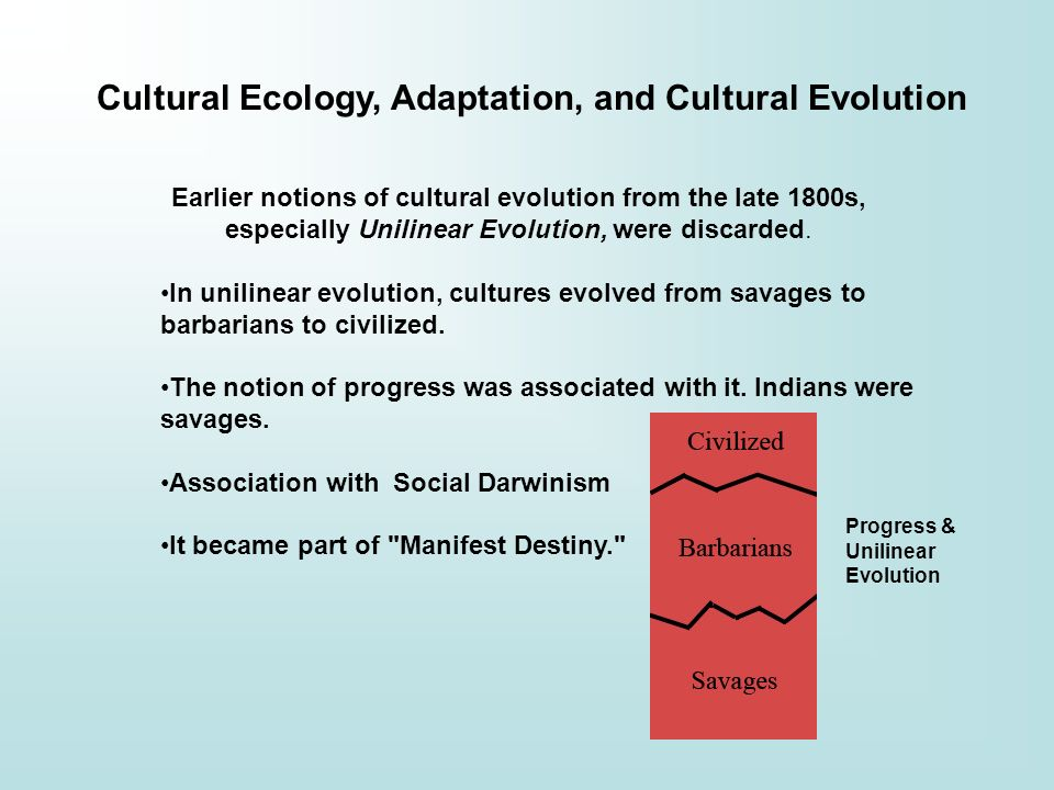 evolution of social work adaptation to Social work practice: history and evolution abstract and keywords social work is a profession that began its life as a call to help the poor, the destitute and the disenfranchised of a rapidly changing social order.