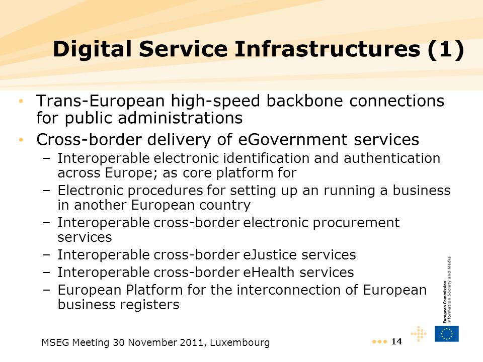 Digital Service Infrastructures (1)