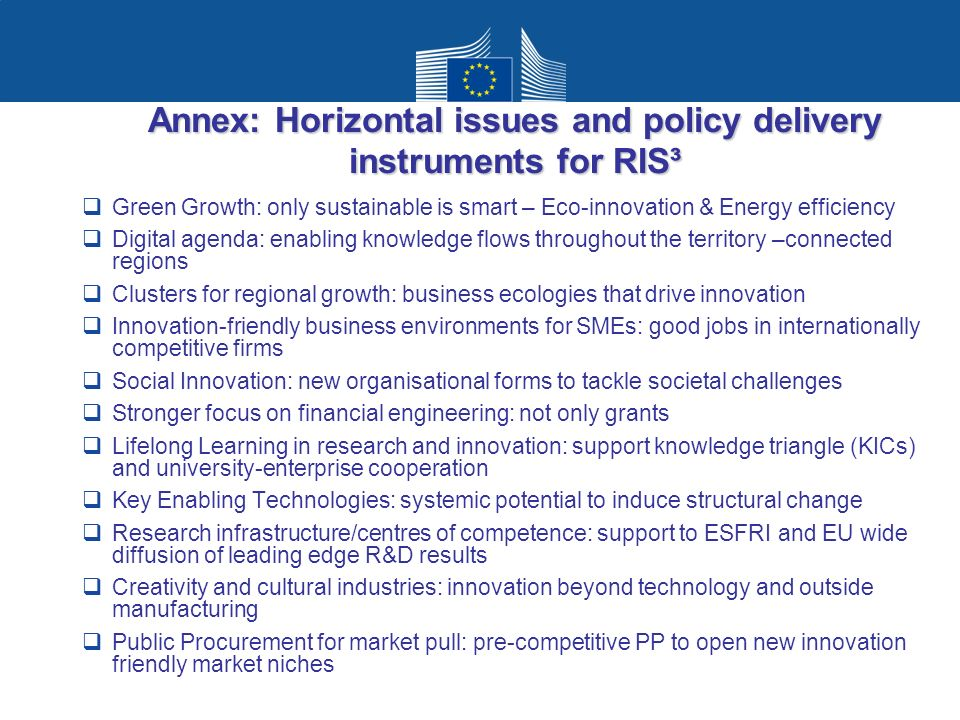 Annex: Horizontal issues and policy delivery instruments for RIS³