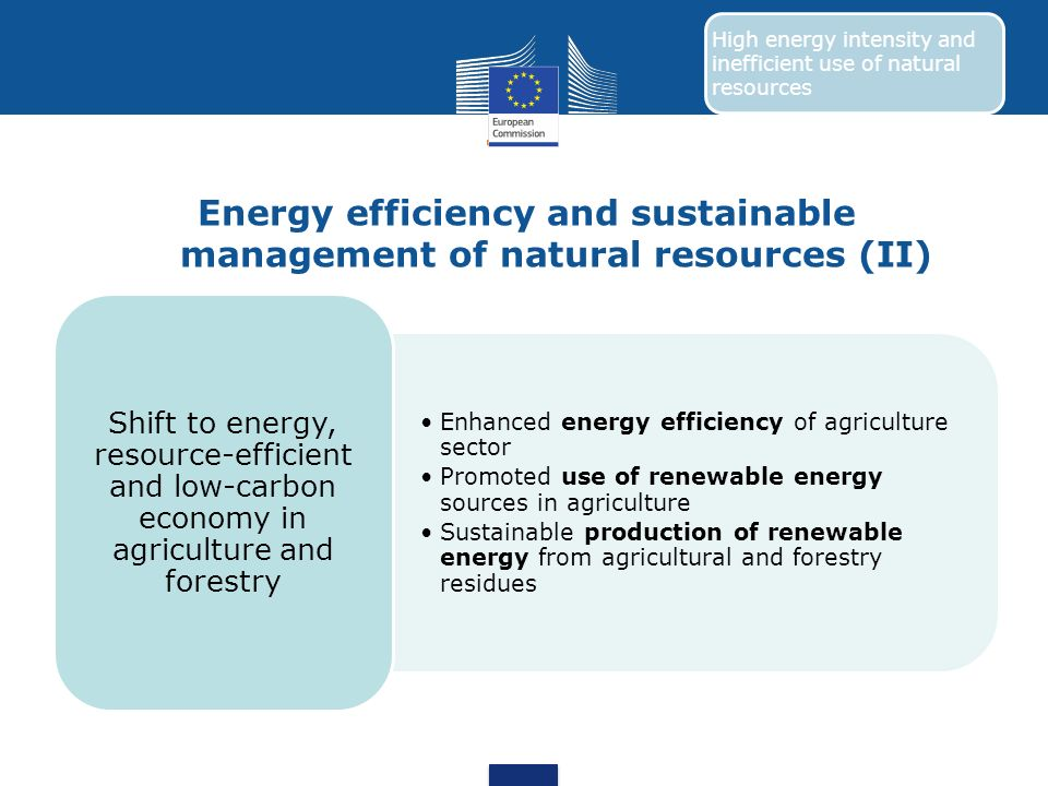 Energy efficiency and sustainable management of natural resources (II)
