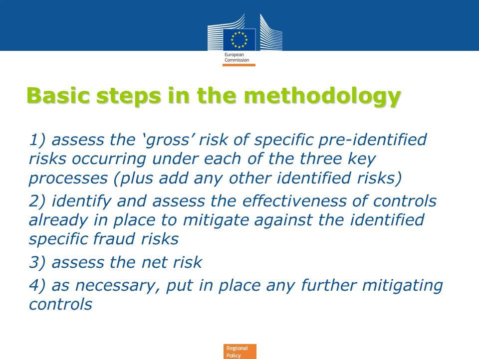 Basic steps in the methodology