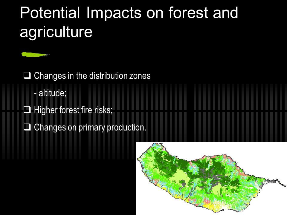 Potential Impacts on forest and agriculture