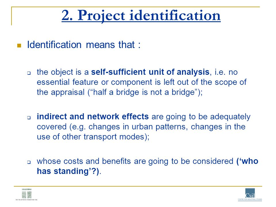 2. Project identification