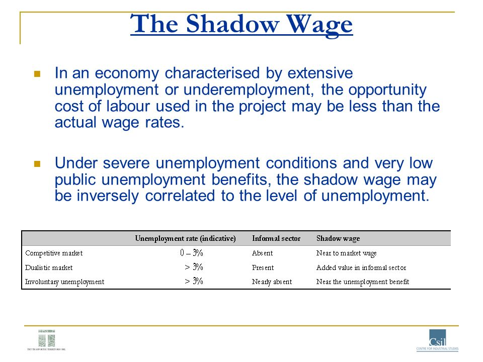 The Shadow Wage