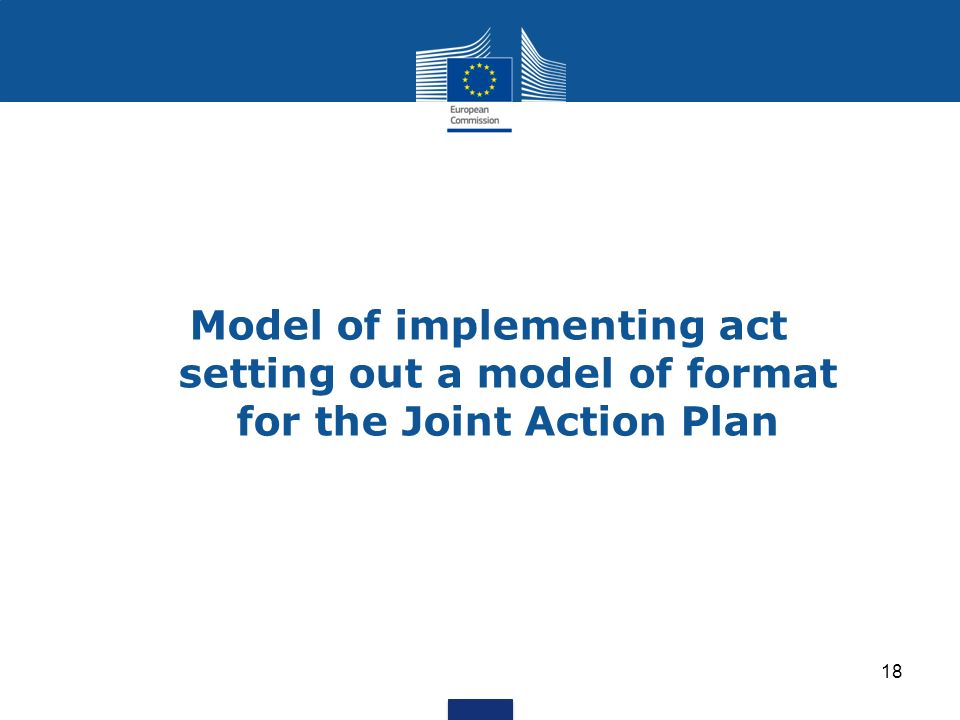 Model of implementing act setting out a model of format for the Joint Action Plan