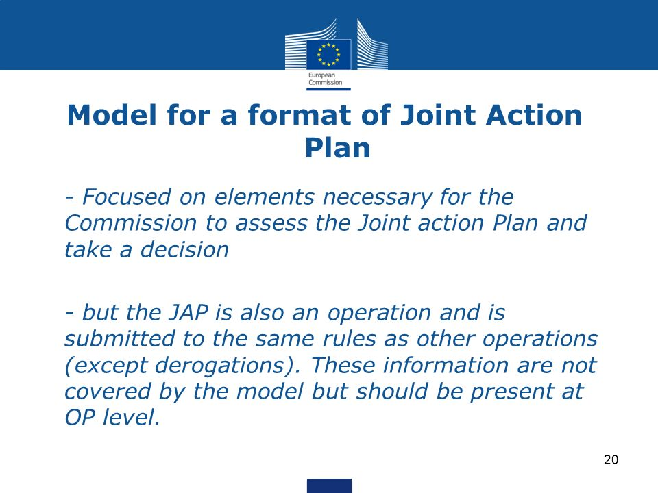 Model for a format of Joint Action Plan