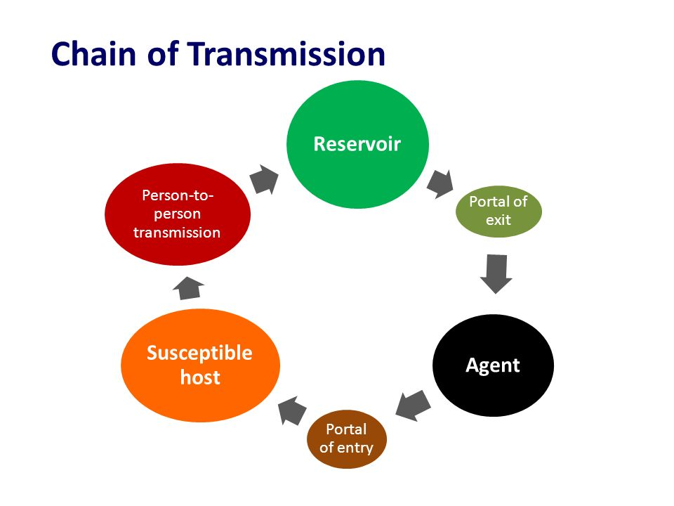 Person-to-person transmission